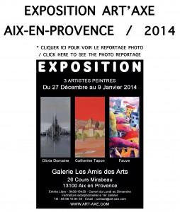 logos expos site fauve AIX2014